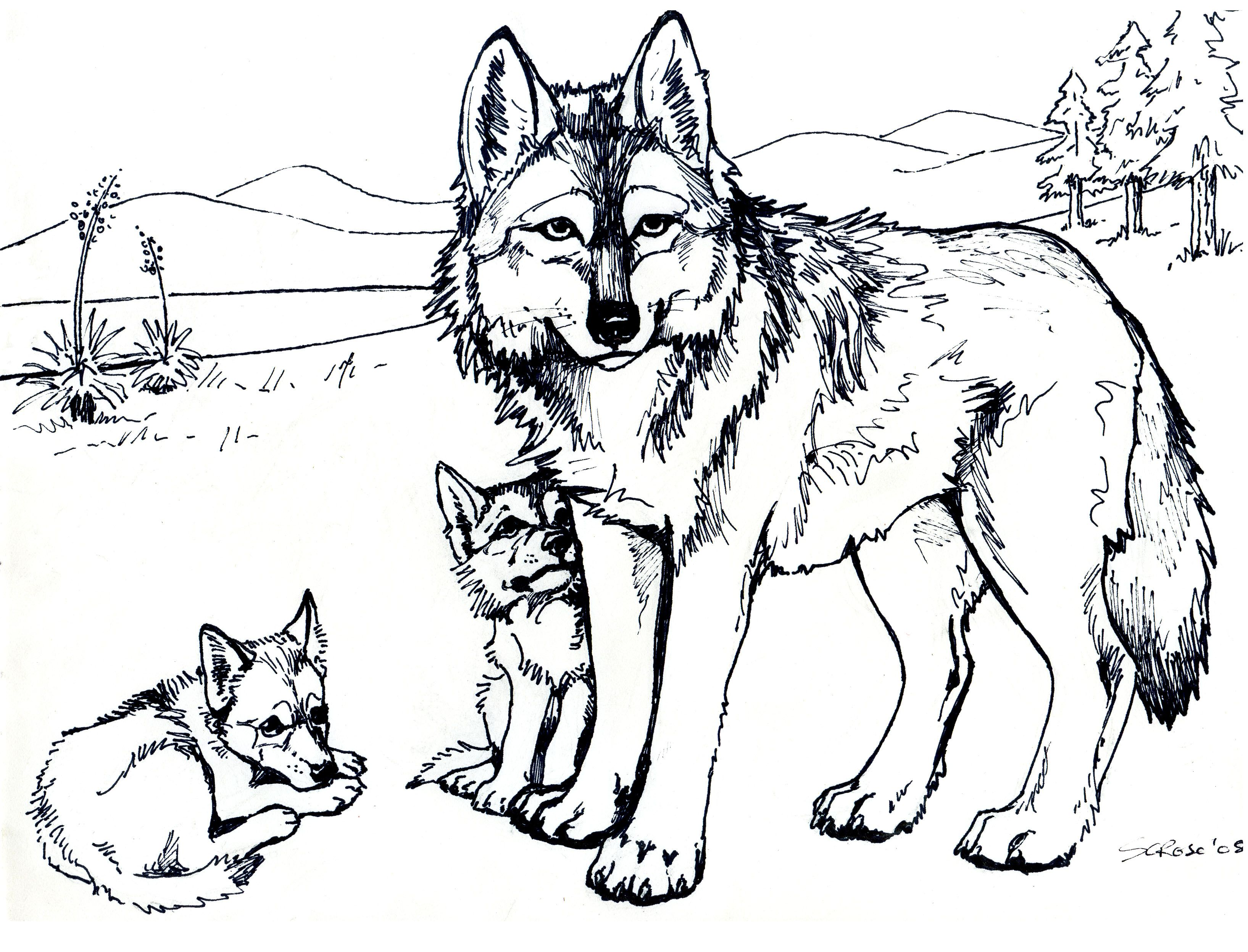 printable free wolf coloring pages for adults - Wolf Coloring Pages
