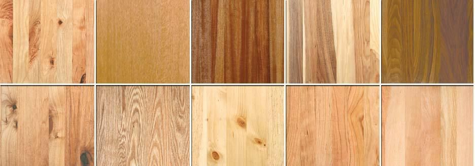 Wood Species Chart Wood Woodworking Woodworking Projects