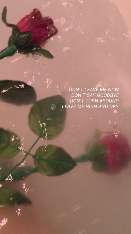 99 Lana Del Rey Lockscreens Tumblr In 2020 Aesthetic Roses