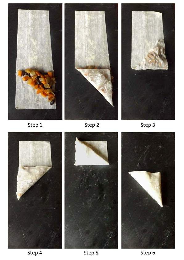 Step By Step Instructions To Folding Triangular Filo
