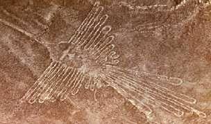 beija-flor, uma energia acelerada....deserto de Nazca