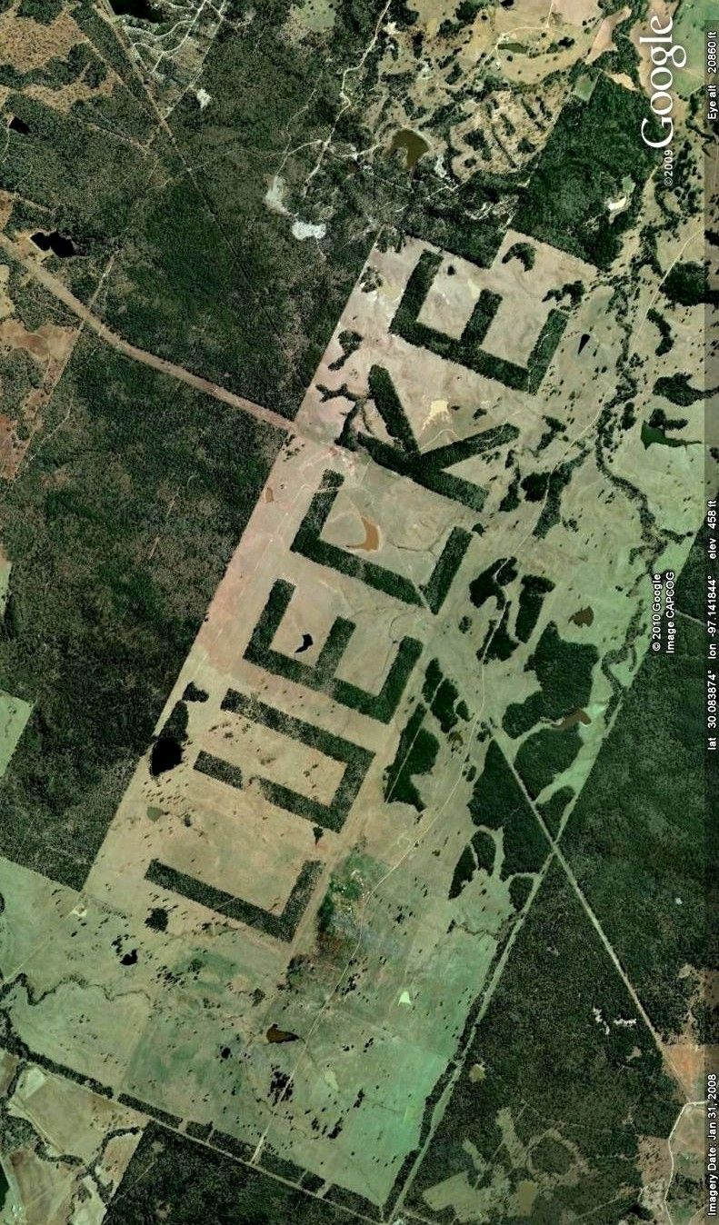The Giant Luecke Southeast Of Bastrop Texas Image From Google