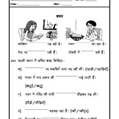 Hindi Grammar - singular plural in hindi | hindi | Pinterest