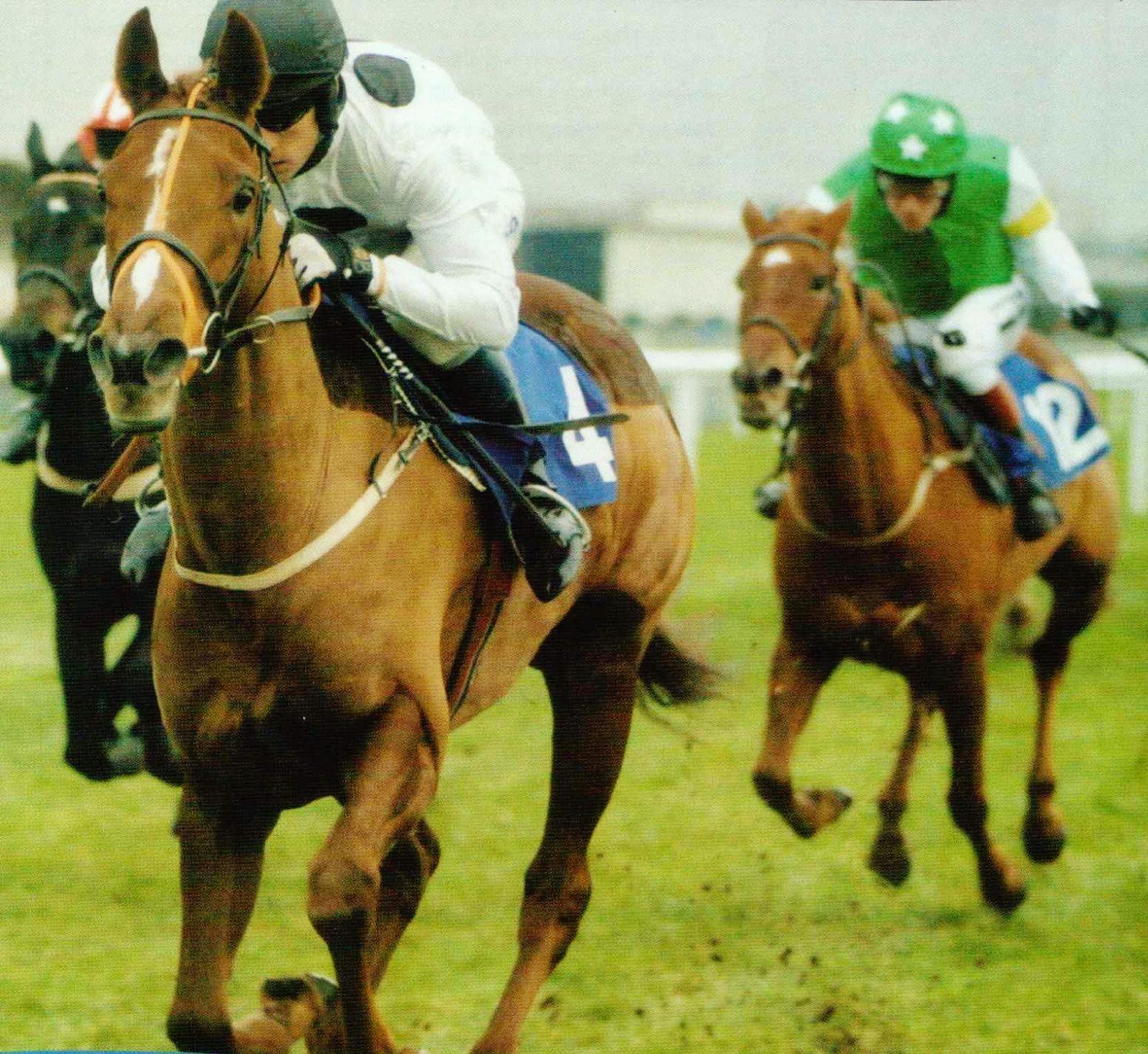 Inherent and M Bradburne winning at Newbury, 14 December 2005.