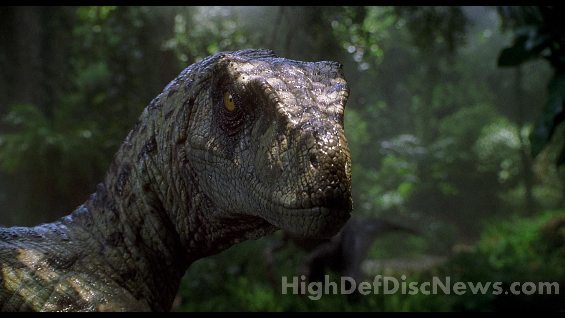 Jurassic Park Spinosaurus Wallpaper Best Cool Wallpaper Hd Hd