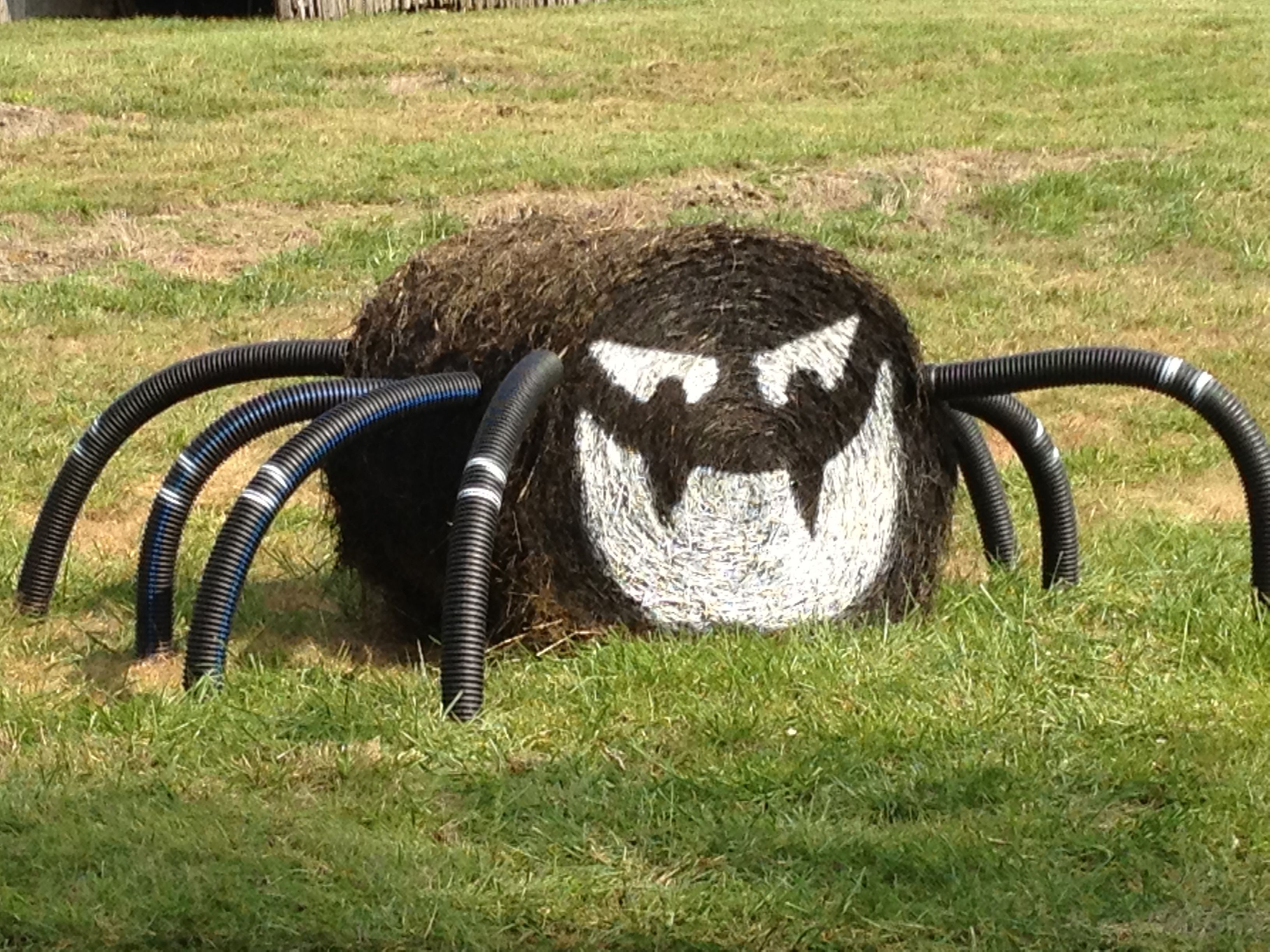 this is how you do halloween on the farm! hay bale spider