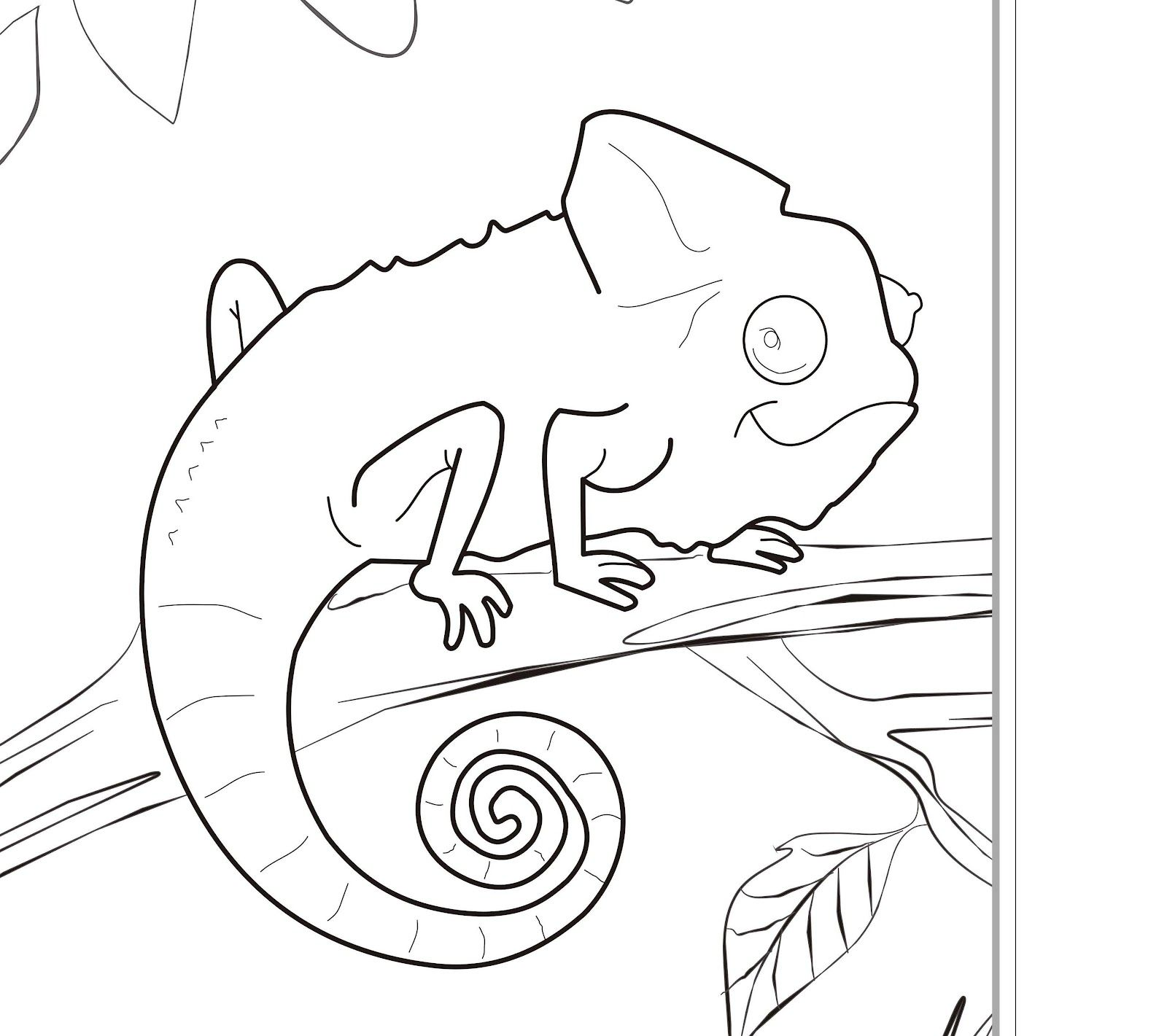 Cute Zoo Animals Coloring Pages, Zoo Animal Coloring Pages