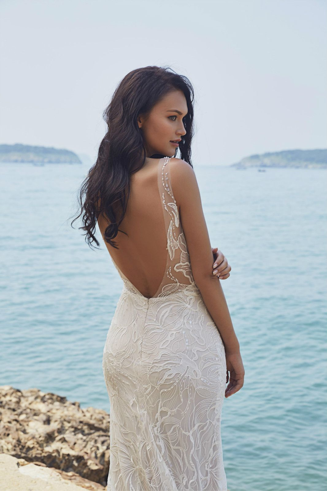 Virena By Chic Nostalgia Will Be Coming Soon To Sincerely The Bride Located In Vancouver Wedding Gown Backless Wedding Dress Trends Wedding Dress Inspiration [ 1600 x 1066 Pixel ]