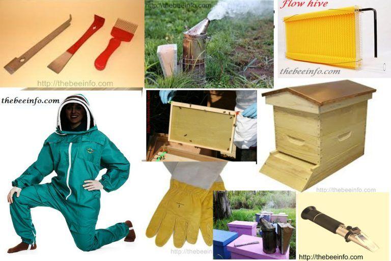 Beekeeping supplies best 7 beehive supply companies for
