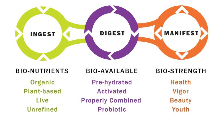 My Glow Bio » Glow Bio Process