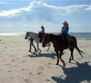 Broke A Toe Les In Cape San Blas Florida Beach Horseback Riding