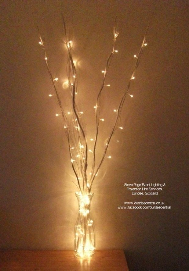 Fairy Light Twig Lights For Hire Standing 1metre In Height Set