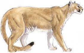 image result for mountain lion clipart shrine pinterest lion rh pinterest com mountain lion clipart mountain lion clipart