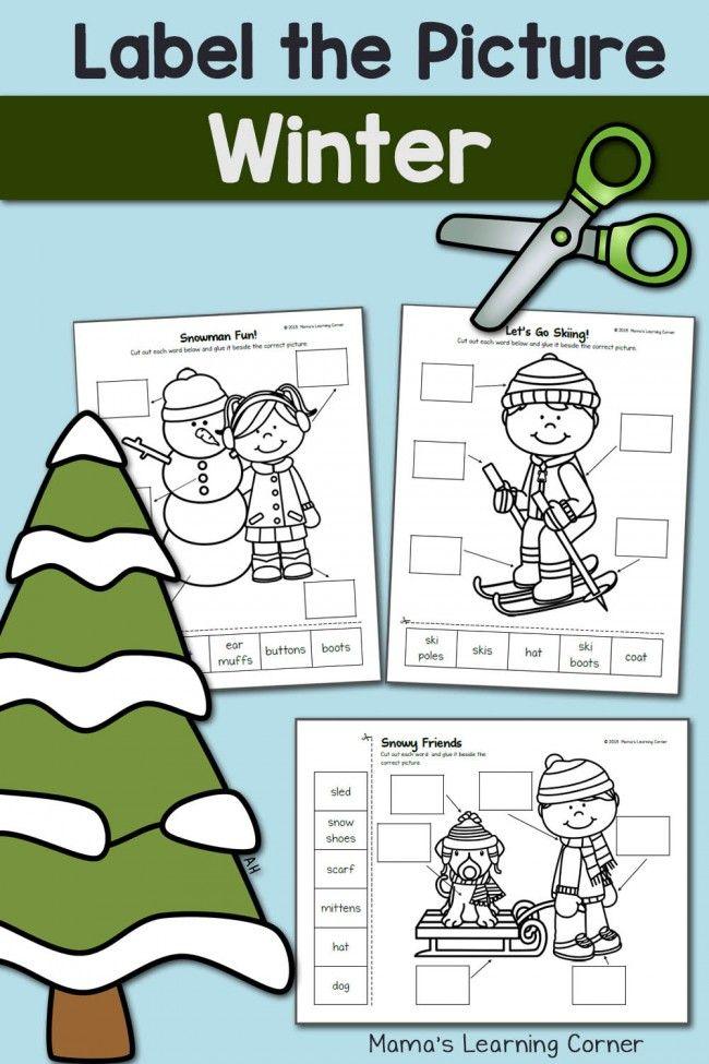 Winter Label the Picture: Cut and Paste! | Winter, Homeschool and School