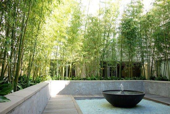 Innenhof Terrasse Wasserbrunnen Bambus Pflanzen Sichtschutz