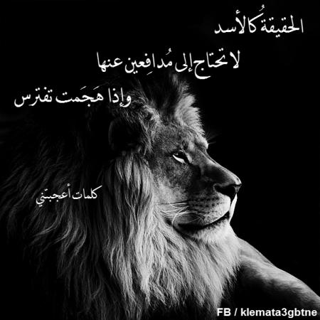 Pin By Ahlam Dz On حكم واقوال عن حياة الدنيا Animals Art Lockscreen Screenshot