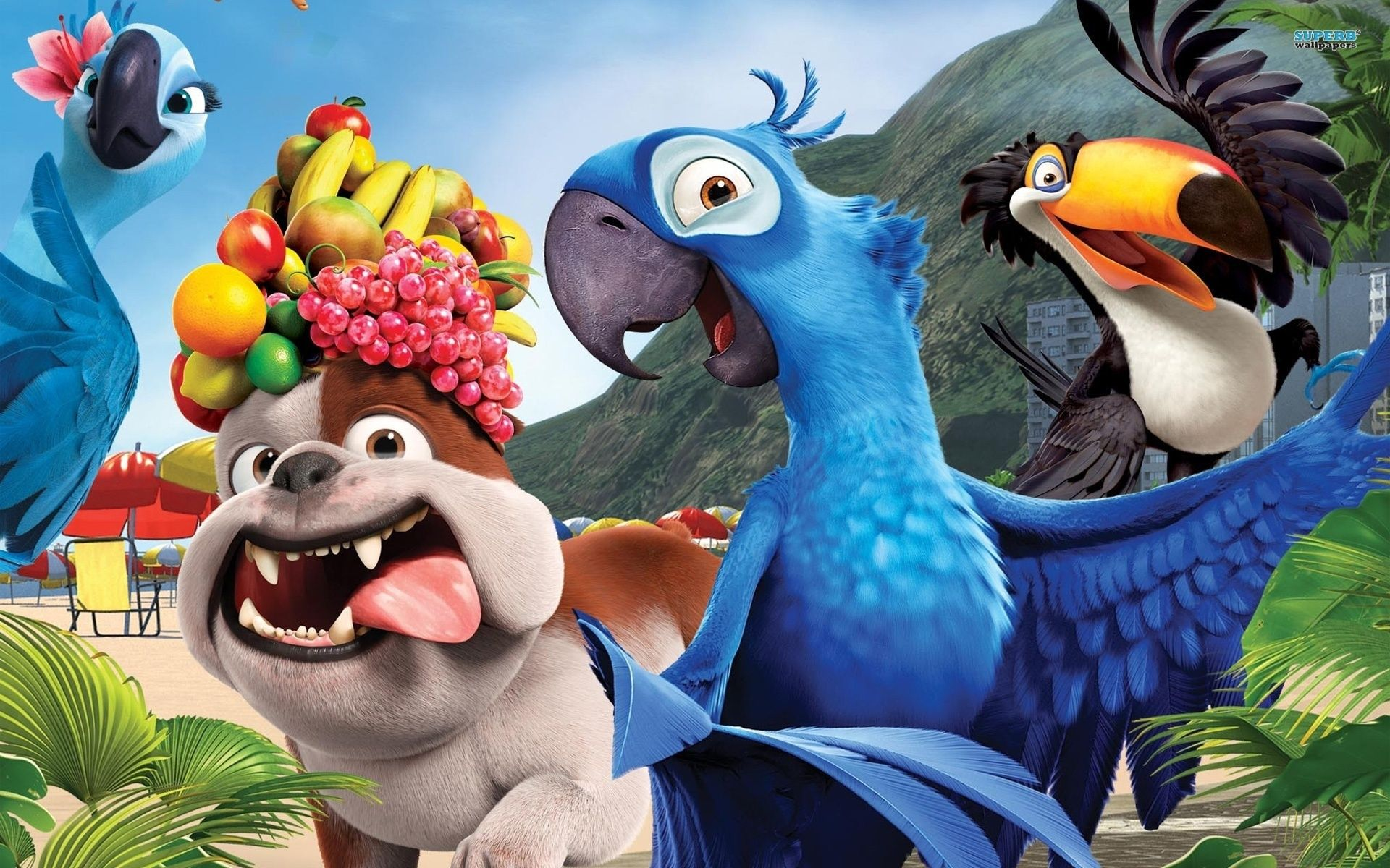 wallpapers cartoon movies rio parrot blue celebrity and movie