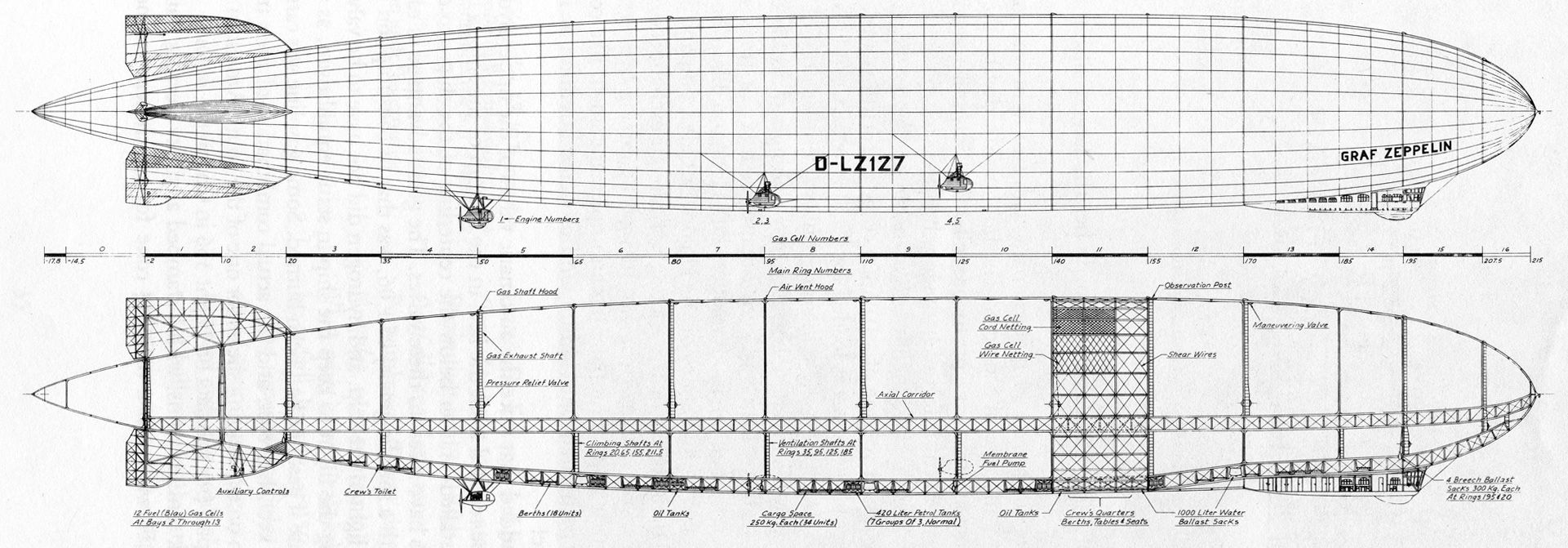 LZ127 Graf Zeppelin profile, showing rings, gas cells, and major elements
