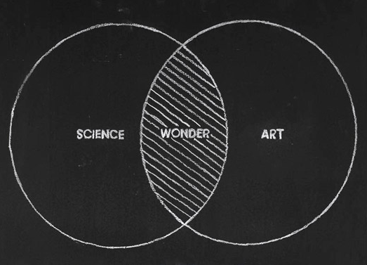 Venn Diagram | Art, Science, Wonder | Visualuzations | Pinterest ...
