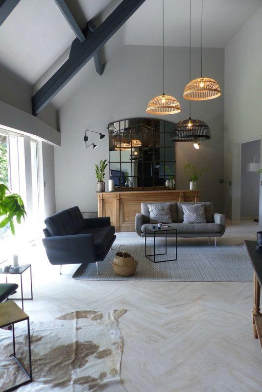 Un Salon Au Plafond Original Idea In 2019 Home Decor