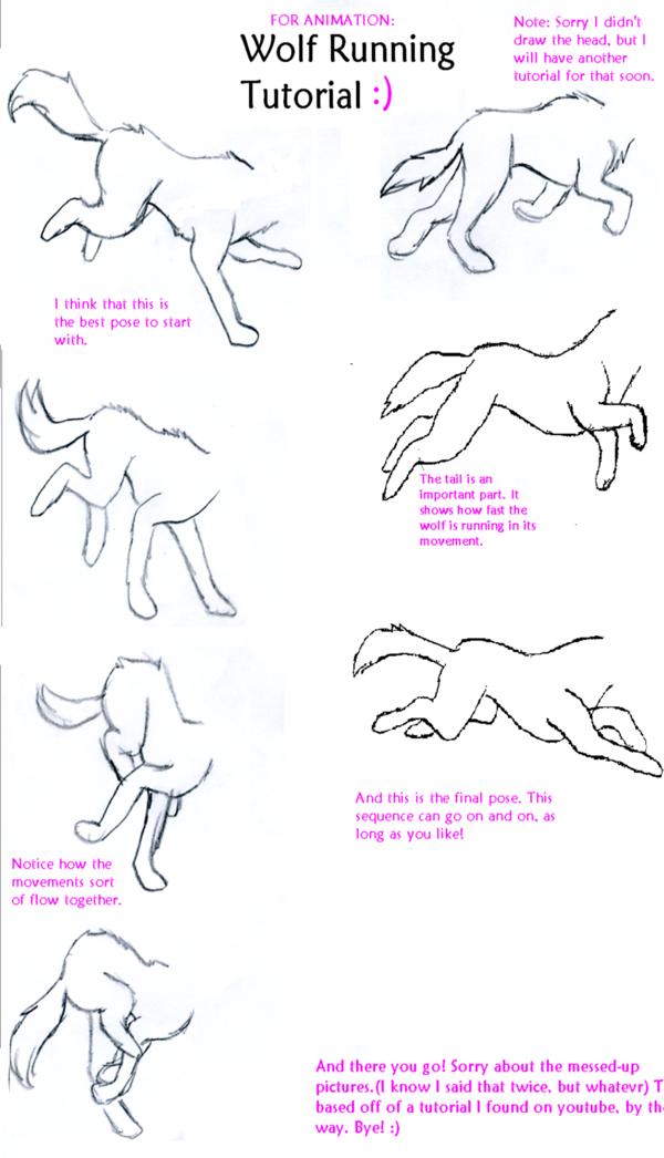 Wolf Run Tutorial By Wolfsrainluv22 On Deviantart Drawing Tutorial Art Tutorials Anime Drawings