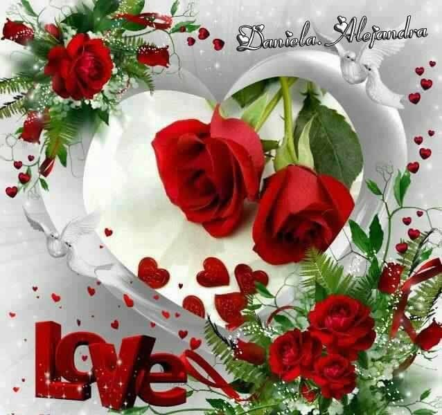 Imagenes De Rosas Flores Con Movimiento De Amor Imagen Rosa