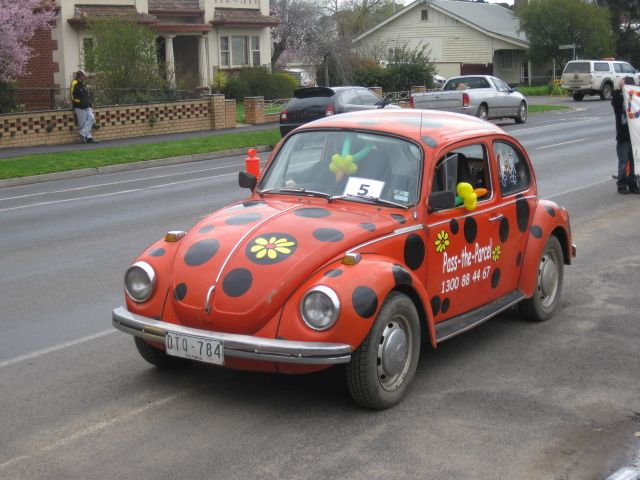 ladybug car luv the vw bugs pinterest beetle vw beetles rh pinterest com