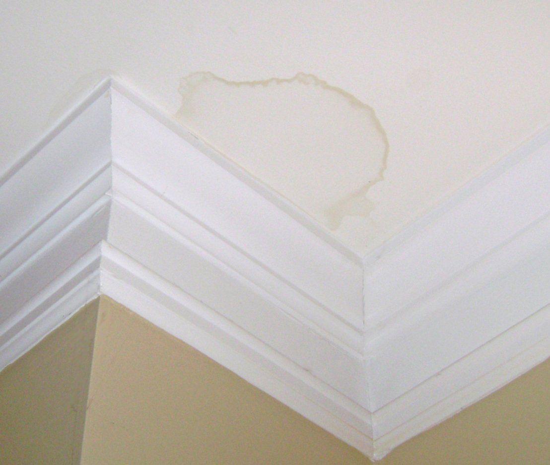 Water Stain On Drywall Ceiling Due To Roof Leak Roofrepairideas Roofingrepairleaky Roof Repair Leaky Roof Repair Leaky Roof