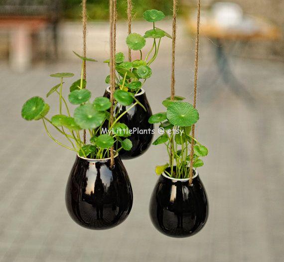 Black Egg Shape Ceramic Pottery Hanging Planter Container -- succulent pot -- kitchen herb flower box