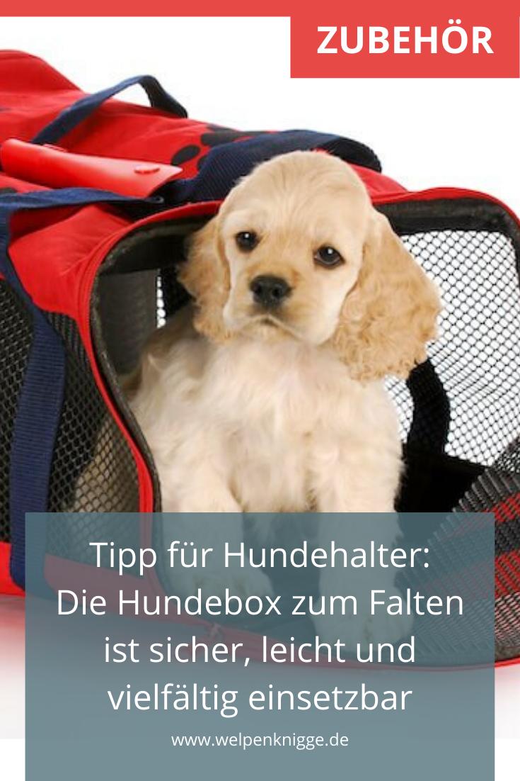 Faltbare Transportbox Fur Das Auto In 2020 Welpen Hunde Hundebox