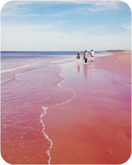 Prince Edward Islands red sand beaches