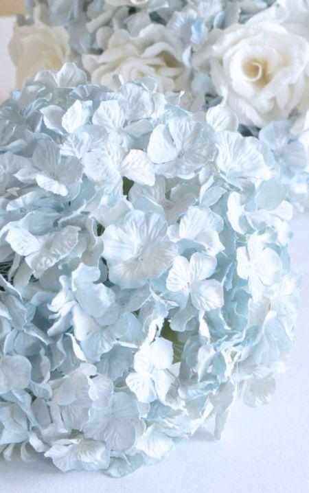 Hydragenia Pastel Blue Soft Blue Blue Aesthetic