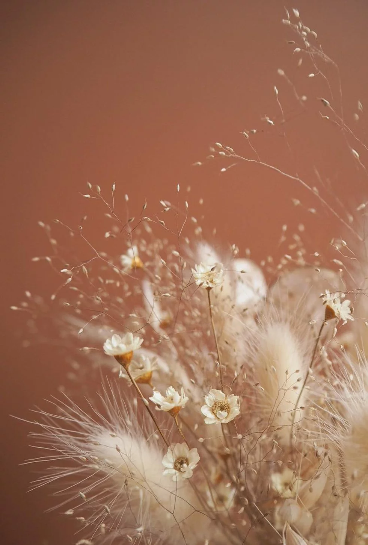 Brown Background Floral