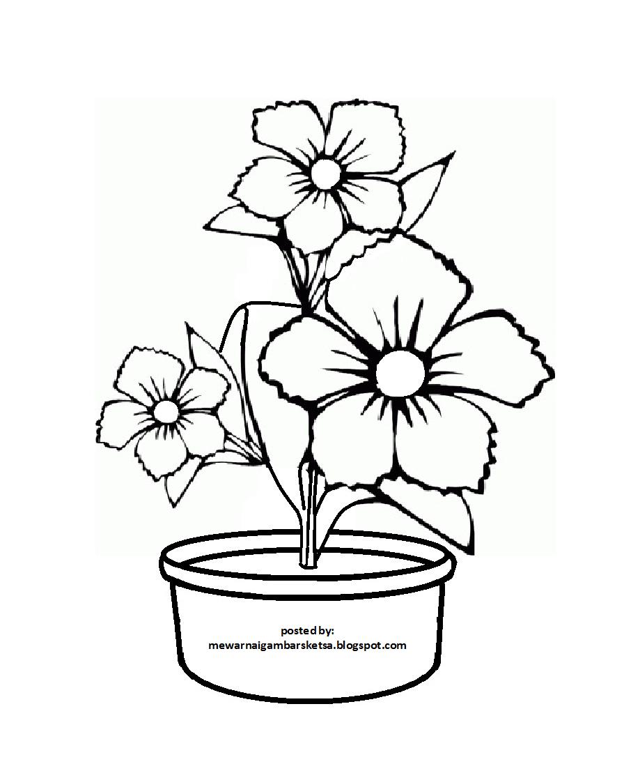 970 Pola Gambar Bunga Untuk Kolase Terbaik Bunga, Gambar