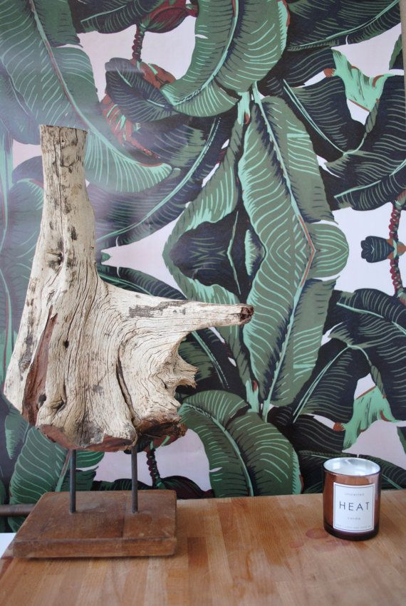 Wallpaper, Banana, Banana Leaf Wallpaper, Leaves Wallpaper