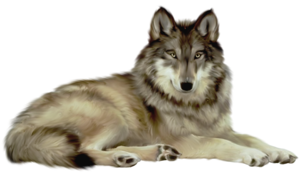 Wolf transparent. Clipart animal animals