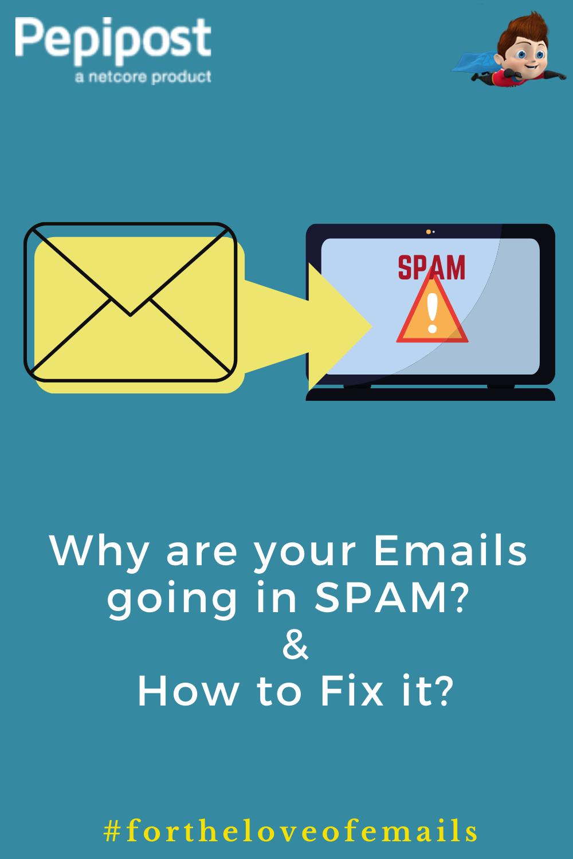Photo of E-Mail lebt und läuft – Tatsächlich bleibt E-Mail-Marketing eines der …