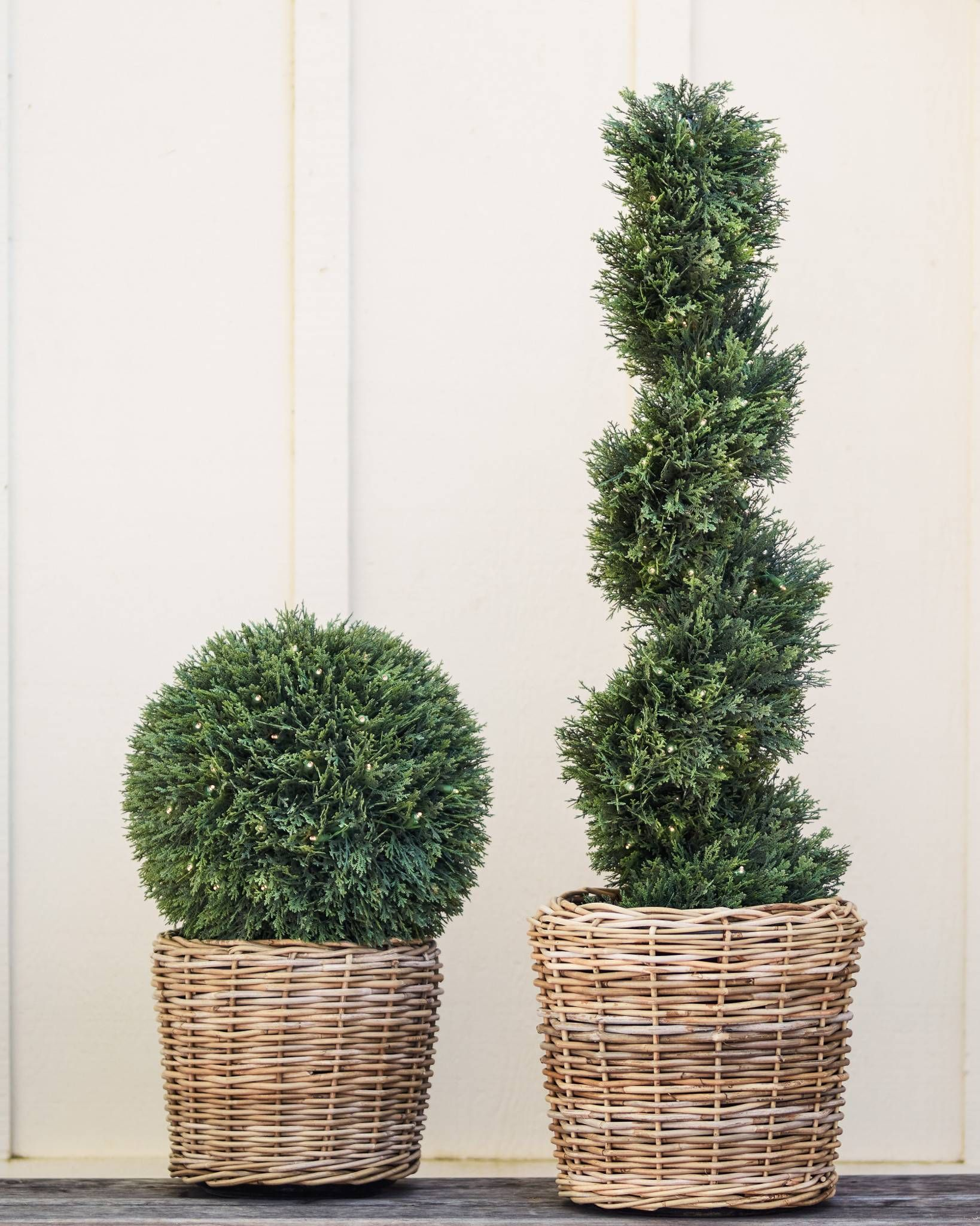 Cypress Led Outdoor Topiary Balsam Hill Potted Trees Outdoor Topiary Porch Trees