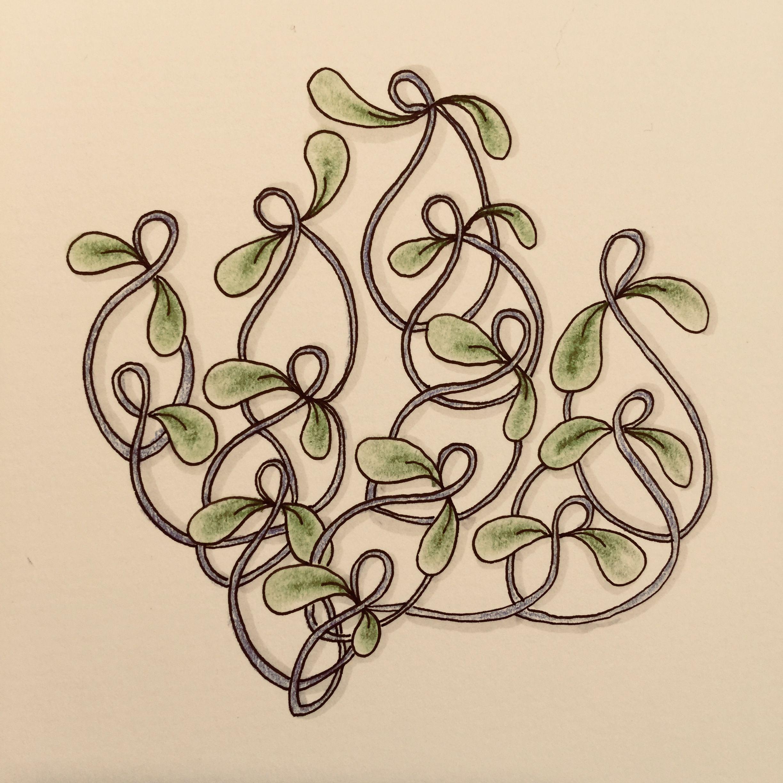 dancingshnek zentangle  zentangle muster zentangle muster