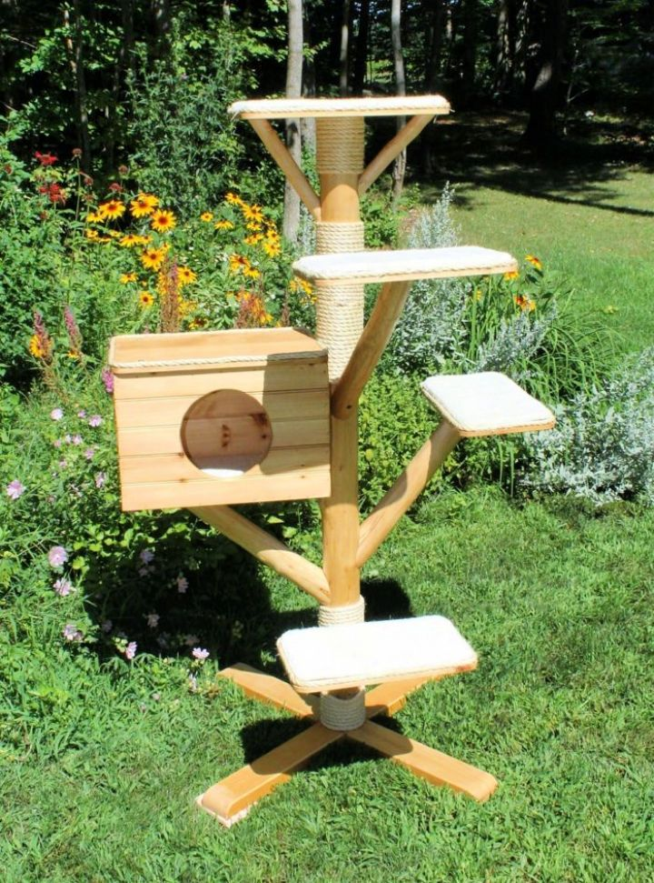 15 Best Outdoor Cat Tree Ideas And Plans Cat Tree House Outdoor Cat Tree Outdoor Cat House