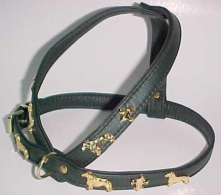 daschund and fleur de lis dog collar- Bing Images