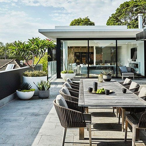 STYLE TIP  Tree Potting is part of Roof terrace design, Rooftop terrace design, Terrace design, Rooftop design, Roof garden design, Rooftop garden - Let's Go Tree Potting Add a beautiful feature to your garden…