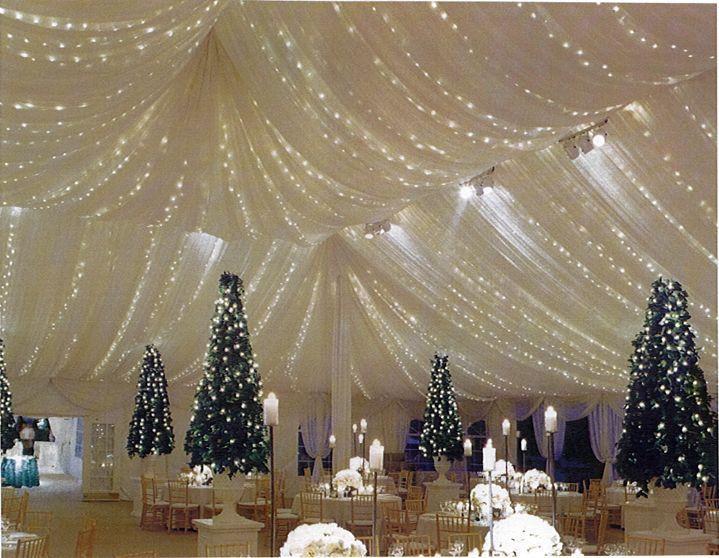 Winter Wedding Tent Party Tent Rentals Tent Decorations Tent