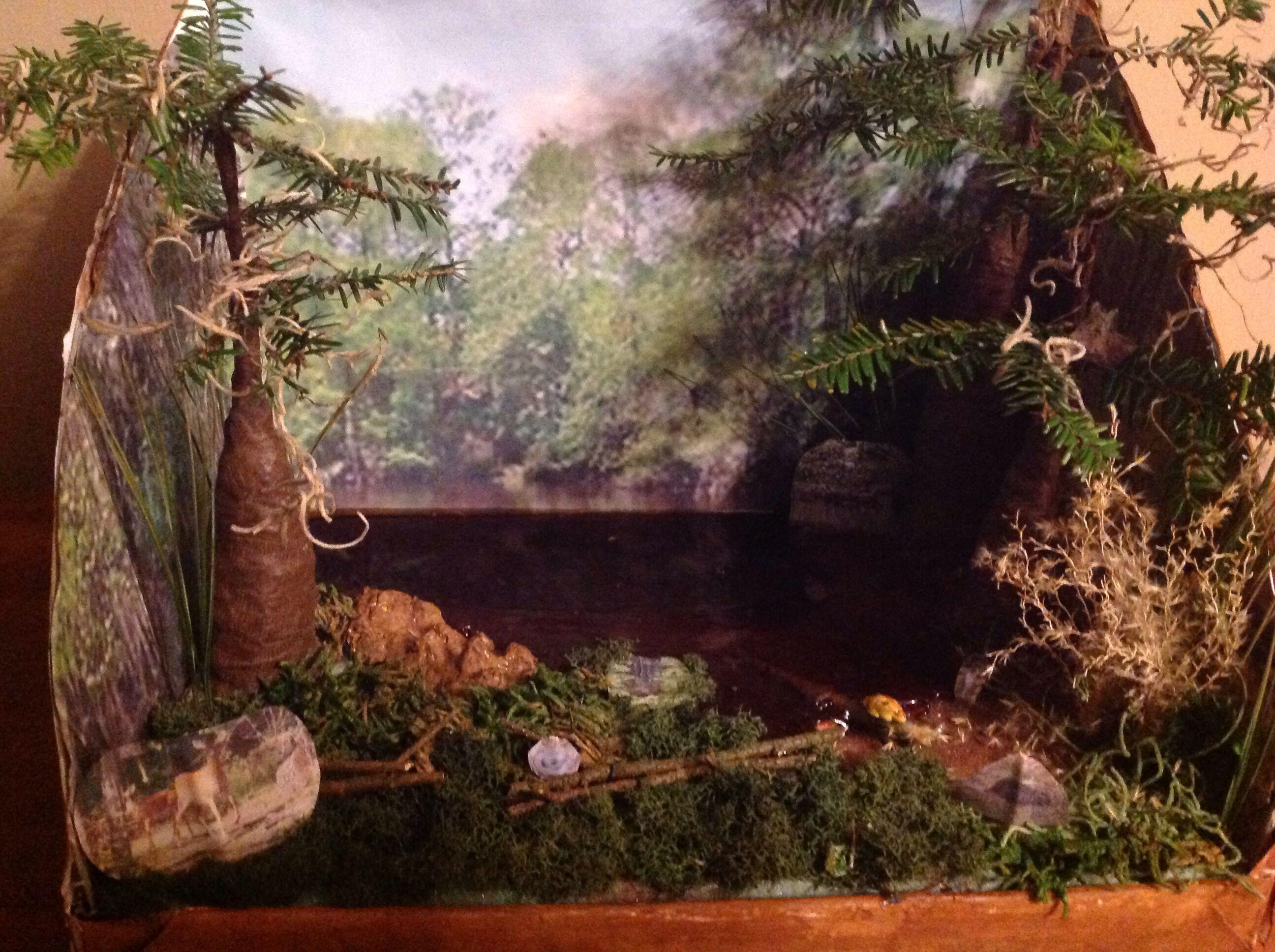 Rainforest Shoebox Diorama Printables Ava T Diorama