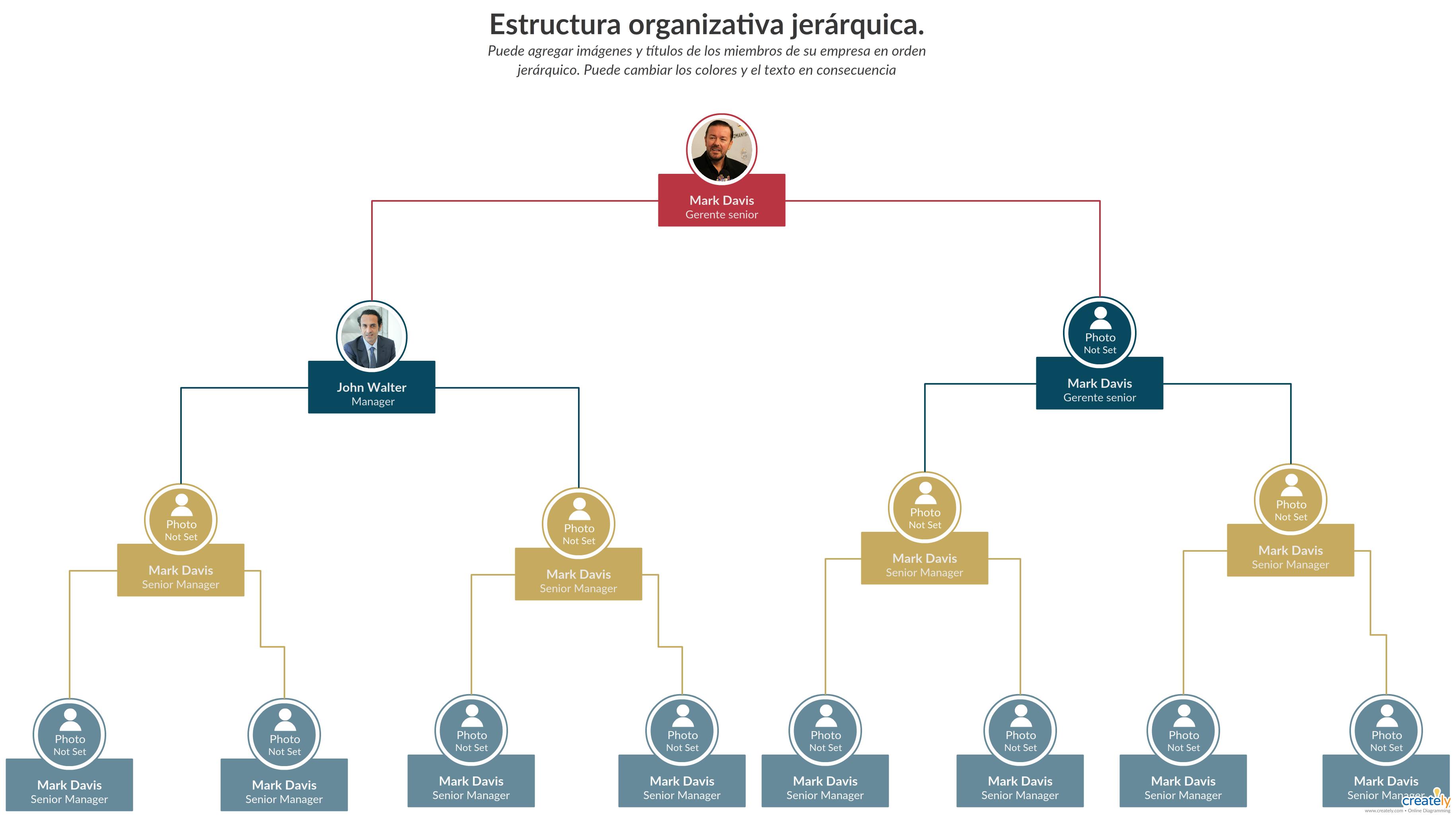 Una Estructura Organizacional Jerárquica Es La Cadena De