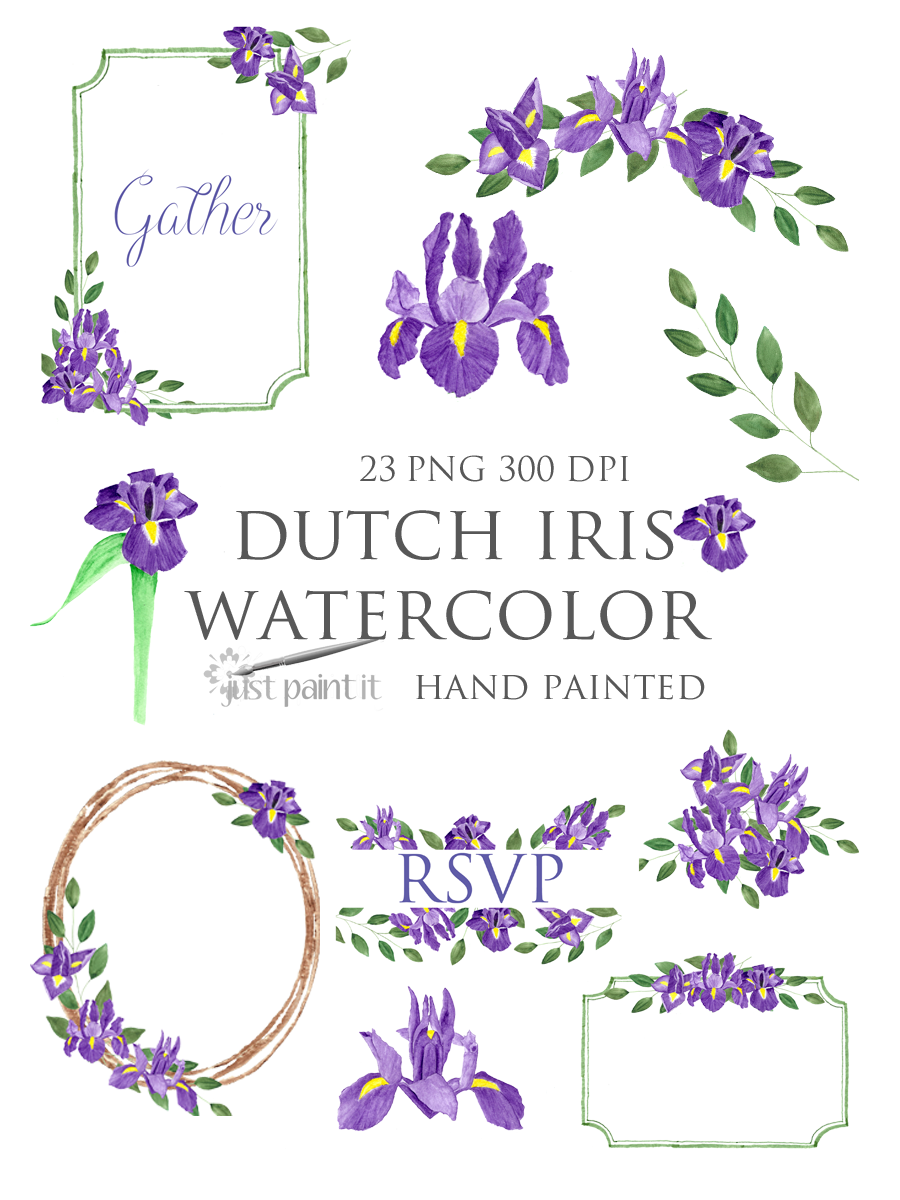 Purple Iris Watercolor Clipart Dutch Iris Purple Flower Etsy Purple Iris Clip Art Watercolor Clipart