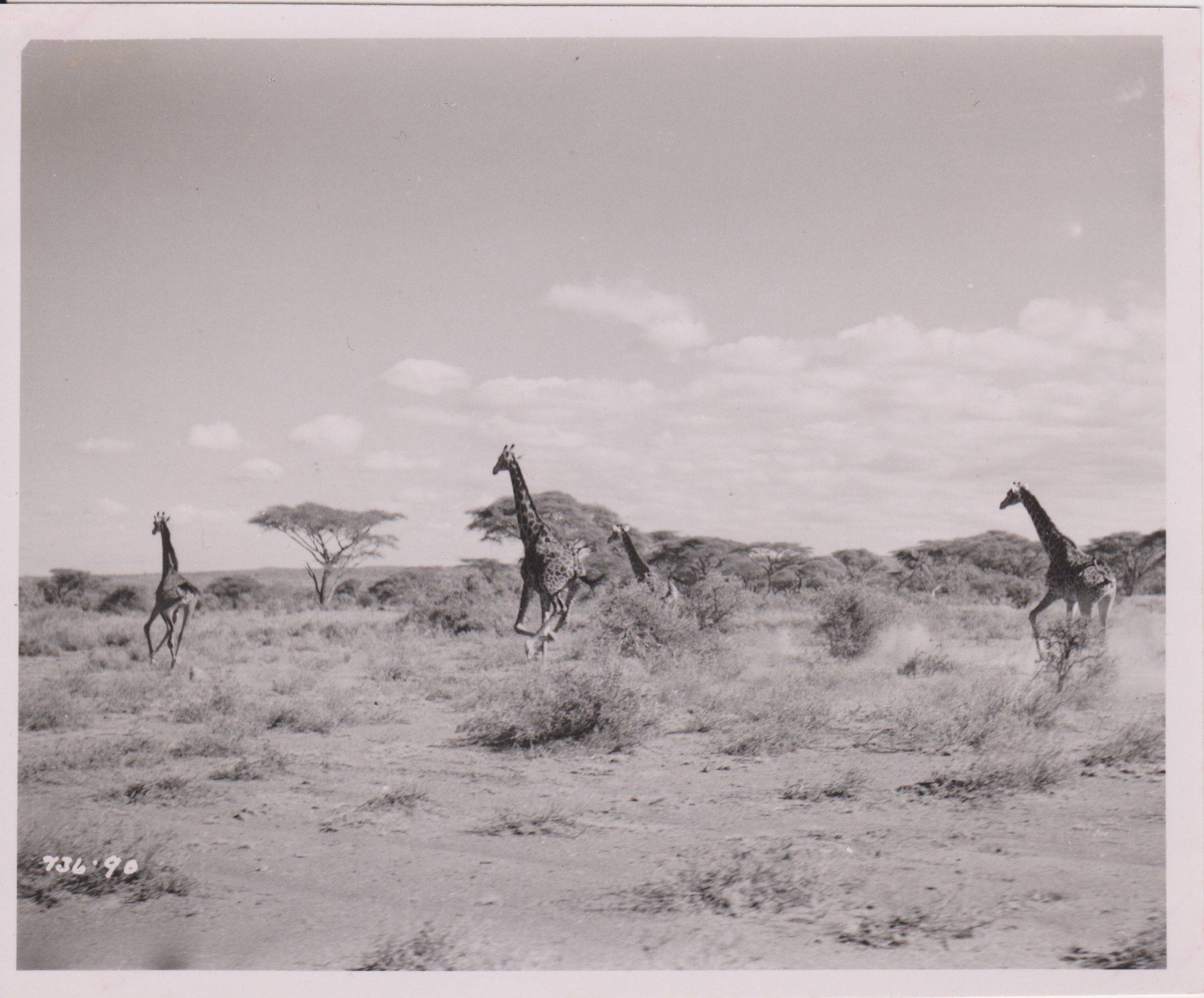 Photos of 1940s Tanzania - stills from the film Men of Two Worlds - Gane and Marshall Travel Blog