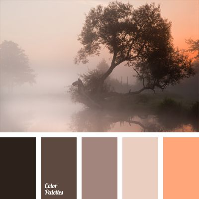 colour of fog, colour of fog over a lake, colour of salmon meat, colour of sunset, colour solution for interior design, combination of colours for interior decor, light-carrot colour, pinky-gray, reddish brown, shades of brown,