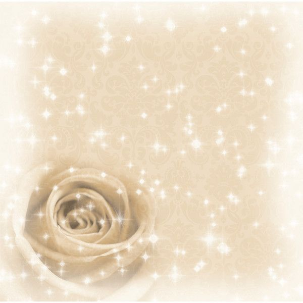 Sparkling Cream Rose 12 x 12 Paper (675 CLP) ❤ liked on Polyvore featuring backgrounds, flowers, sfondi, pictures, frames, effects, wallpaper, fillers, borders and picture frame