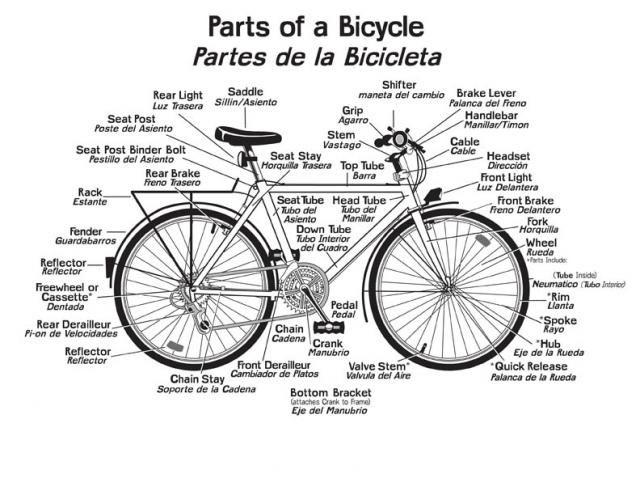 The Basics Bicycle Anatomy Bicycles Stuff Bicycle Bike